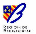 Quels sont les professionnels habilités à proposer un bilan énergétique en région Bourgogne ? | Bilan énergétique