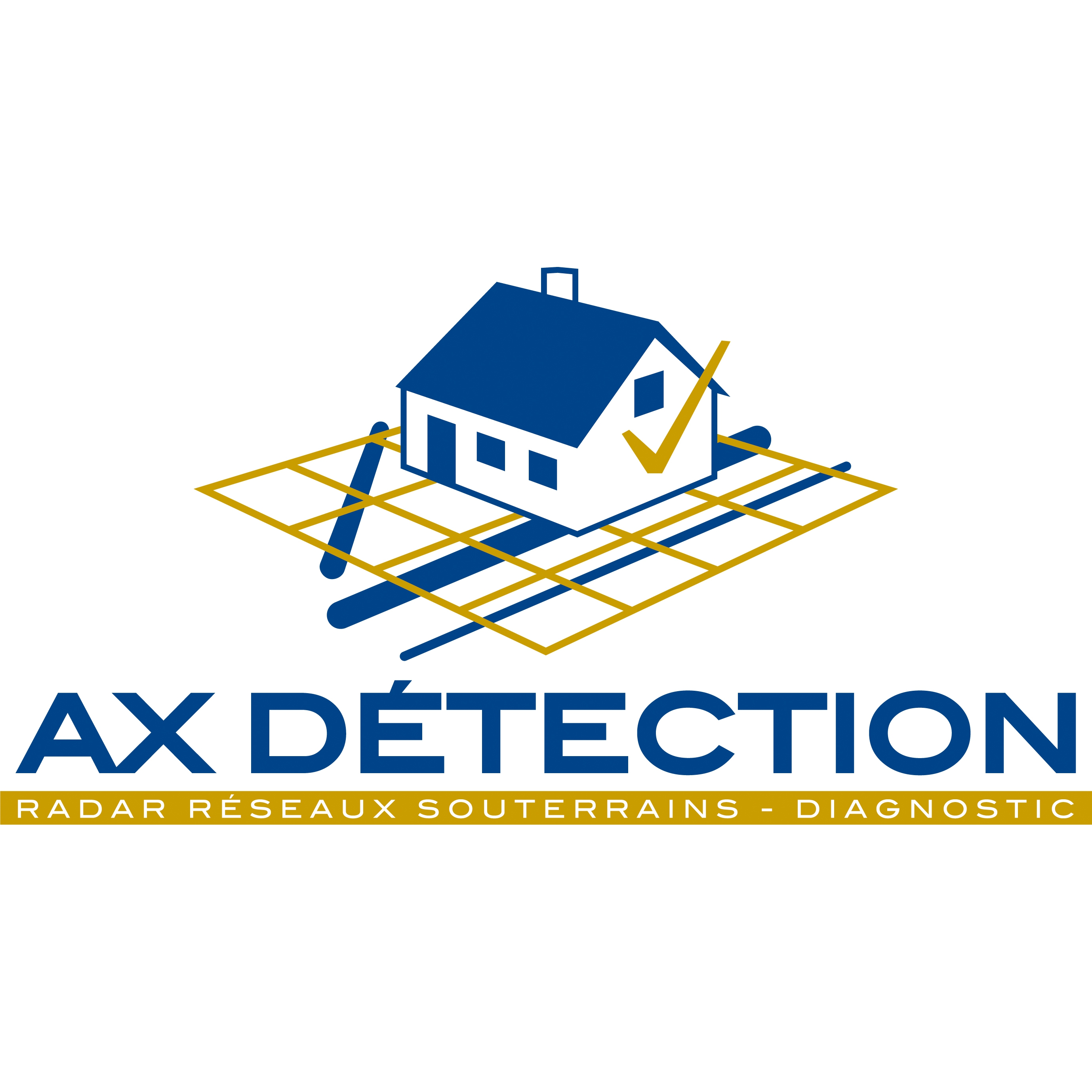 Logo AX Detection
