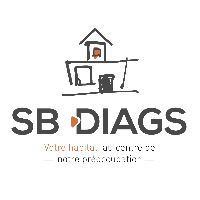 Logo SB Diags