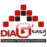 Logo DIAG'EASY