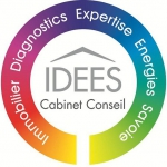 Logo IDEES CABINET CONSEIL